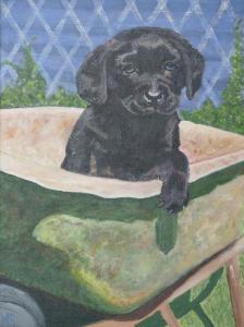 Schilderij van zwarte labradorpuppy 'Bolletje', in kruiwagen