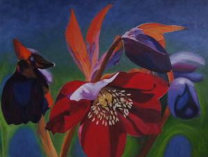 Kleurig schilderij van de bloem Helleborus Oriëntalis